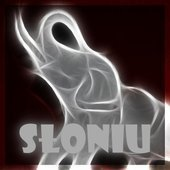 Sloniu